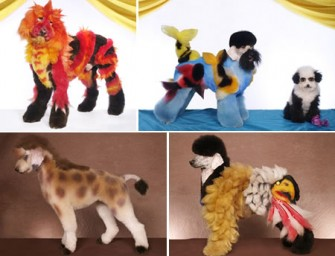 Creative grooming turns dogs into dragons, giraffes, pandas, etc.