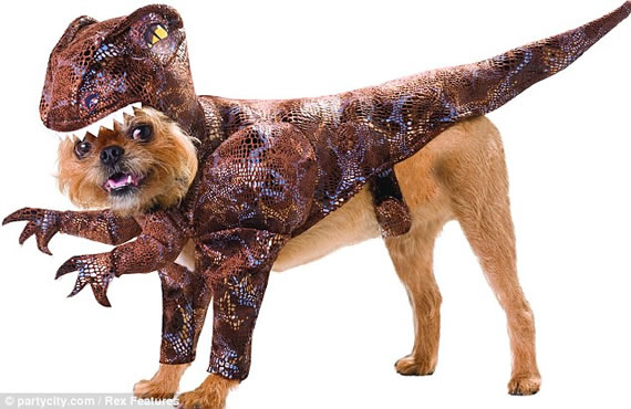 Turn your dog into a dinosaur with the Animal Planet costumes