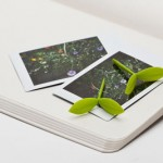 Plant-Sprout-bookmark-2