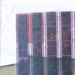 photo-fabric-5