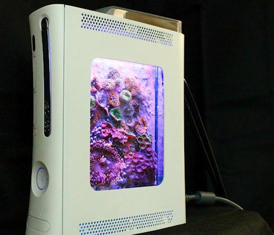 Stunning- XBOX 360 Pico-Reef Aquarium.