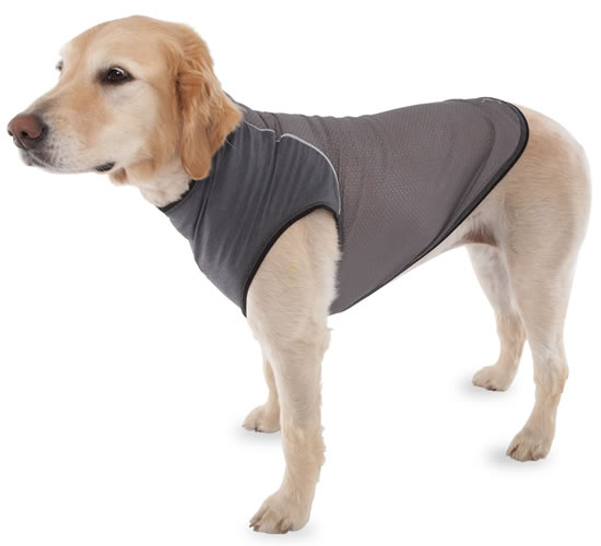 Insect Repelling Canine Vest keeps the Pooch Protected