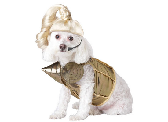 The Famous People Dog Halloween Costumes