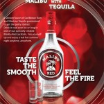 flavored vodka 2 150x150 Weird liquor pairings that will make your head spin in all the wrong ways