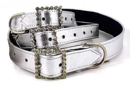 Glitter your Pet with a Metallic Silver Rhinestone Dog Collar