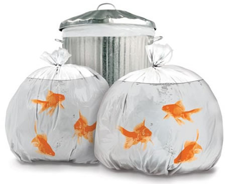 Novelty Goldfish Trash bags are unique