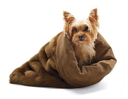 Luxe Faux Fur Pet Cuddler for warm and fuzzy times