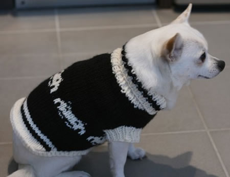 Space Invader Dog Coat helps you turn your dog into a Geek