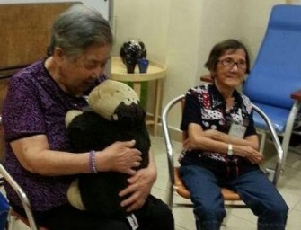 Huggler Robot for elderly patients enhances pet therapy