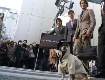 Meet Montjiro: The most fashionable dog in the world
