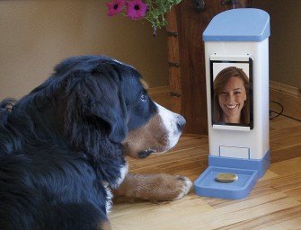 Now you can Chat and Treat your Pup from Afar, Distance No Bar