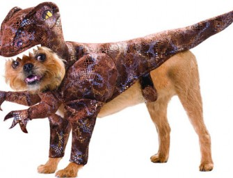 18% Americans would prefer a Dinosaur as a Pet!