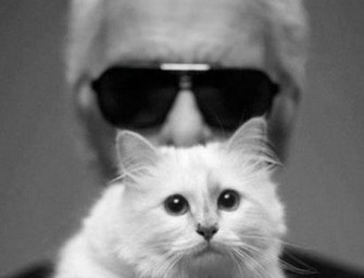 Karl Lagerfeld releases collection inspired by pet cat