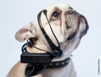 No More Woof: World's first animal thought translation device