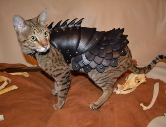 Cat Battle Armor keeps your kitty safe during epic battles for catnip