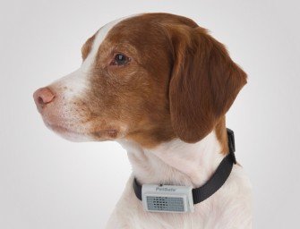 Ultrasonic Bark Control Collar Can calm your pet
