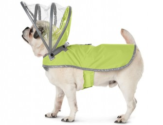 Canine's Raincoat: A comfortable Fall-wear for your pooch