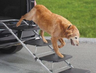 Portable Pet Staircase for Older Pets