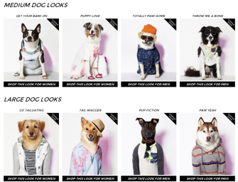 American Eagle to launch a Doggie collection titled American Beagle Outfitters – Maybe?