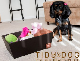 Tidy Dog toy box: An attempt to teach your mutt cleanliness!