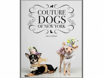 Couture Dogs of New York by Paul Nathan: The most extravagant exclusive doggie fashion
