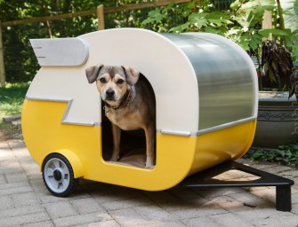 Camper dog house for an adventurous summer