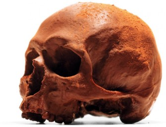 This Anatomically correct Chocolate Skull is to creepy to eat!