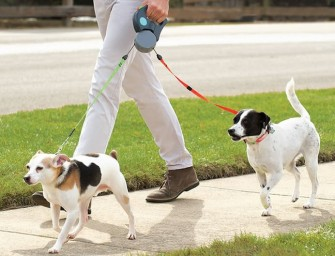 Tangle Free Dual Dog Leash: Walk your dogs in peace