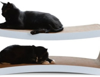 The Cat Scratcher Lounge is everything your cat has ever dreamed of