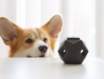 The Odin: A Puzzle Dog Toy with a Modern Modular Design to make your doggie smarter