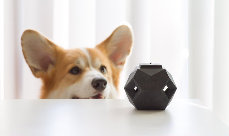 ... Dog Toy with a Modern Modular Design to make your doggie smarter