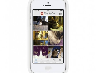 The 'Tag A Cat' App is a social network for your kitties