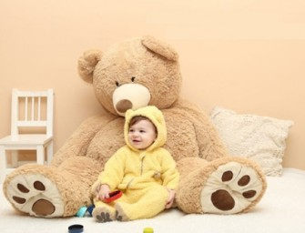Cuteness Overload : Bear Babywear Costume