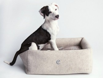 The Little Nap Felt Nature Dog Bed: So cozy you'll try to steal it for yourself