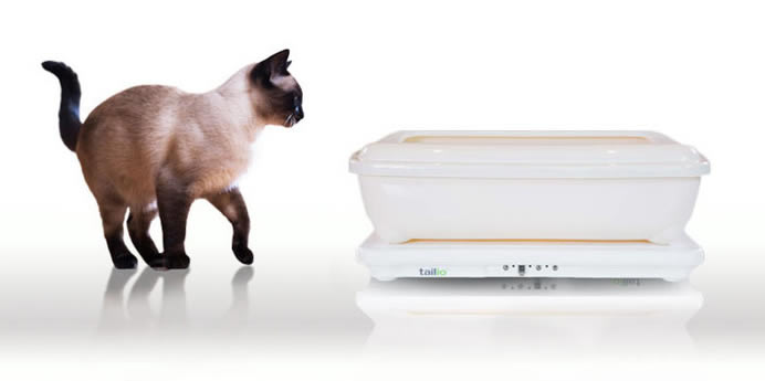 Healthy Cats Always with Tailio Cat Health Monitor