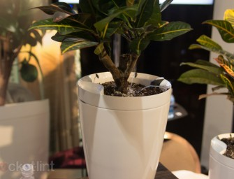 Carefree Care for Plants with Parrot Pot and Parrot H2O