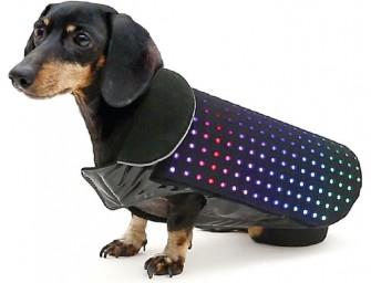 Disco Dog – The Smartphone Controlled LED Dog Vest