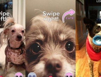BuzzFeed launches new Cute or Not app: Tinder for animals