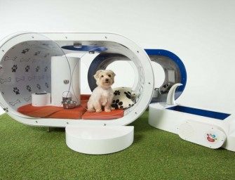 The Samsung Dream Doghouse is the world's most luxurious kennel for the tech-savvy dog
