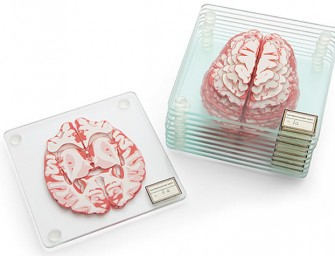 Cerebral Coasters Ideal for Brainiacs