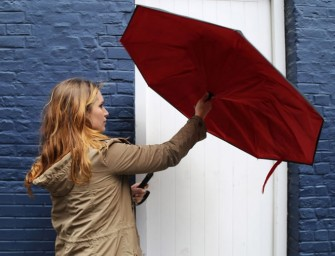 The KAZbrella Revolutionary Inside Out Umbrella: No more wet soaked car seats