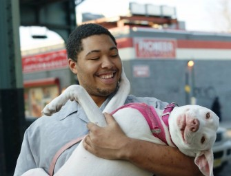 Dogs of New York chronicles the amazing stories of New York humans and their pets
