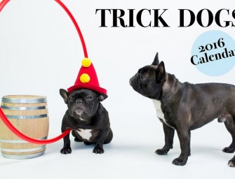 San Francisco's Trick Dog debuts new Dog-inspired menu and sexy dog calender